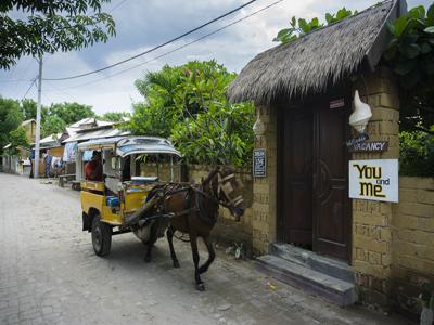 horse cart gili trawangan